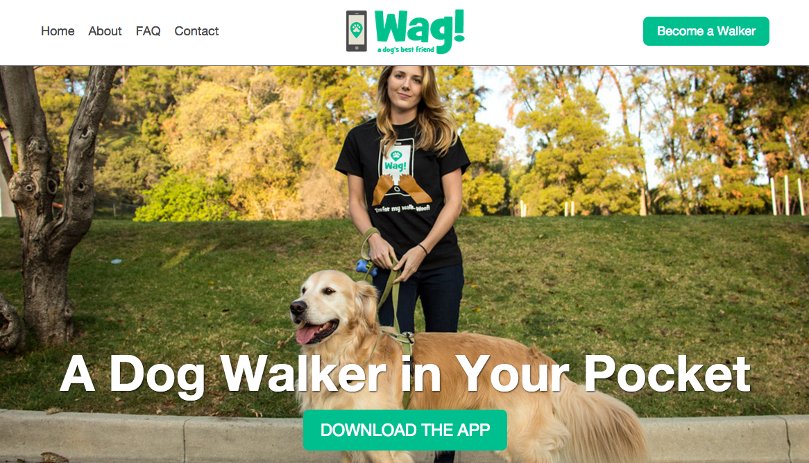 On-demand services - Wag