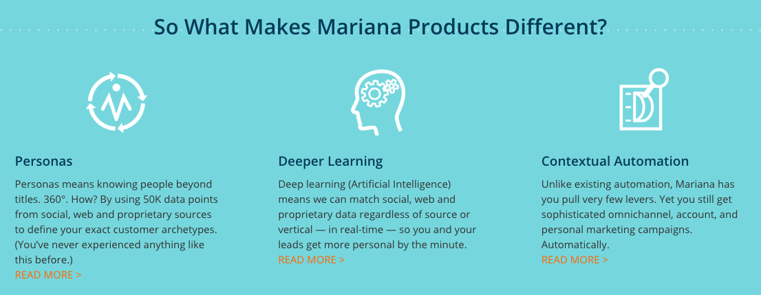 Machine Intelligence Mariana: What Makes Mariana Different