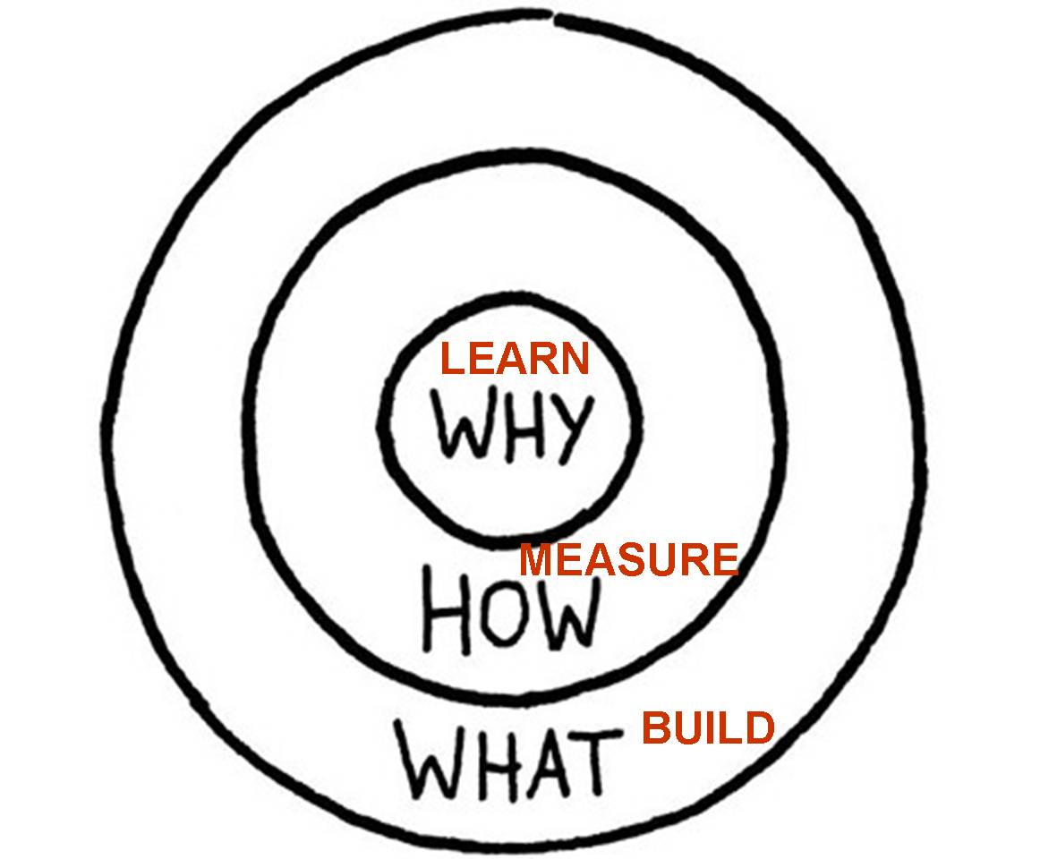 Sinek-LSM cycle